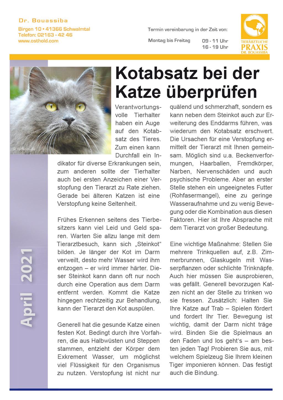 Tierpunkt Praxis Bouassiba April 2021